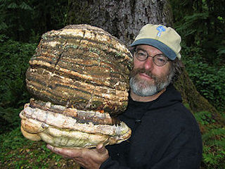 Episode 1 Paul Stamets Founder And President Of Fungi Perfecti Has Written Six Books On Mushroom Cultivation Use Identification Including The